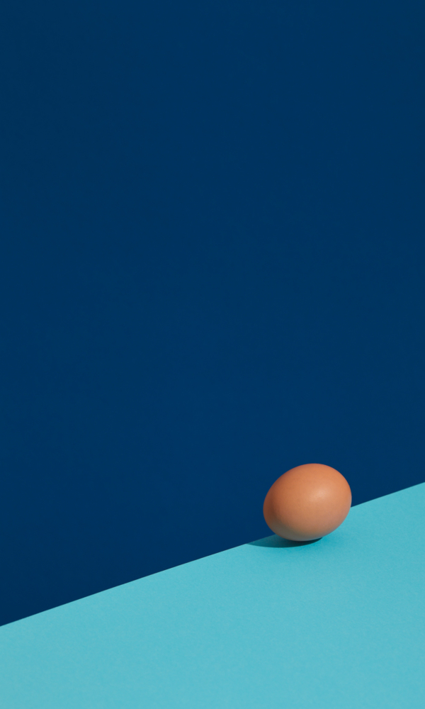 Marco-Viola-Photo-Egg